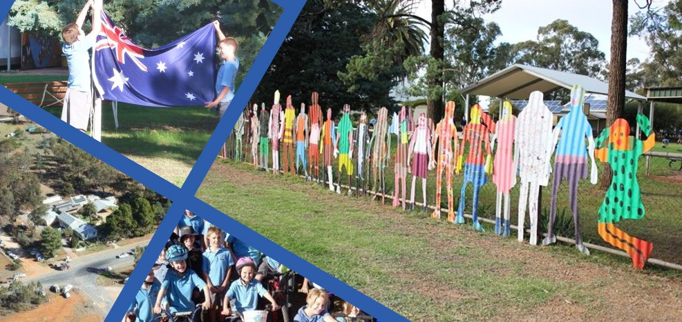 Matong Public School fence display
